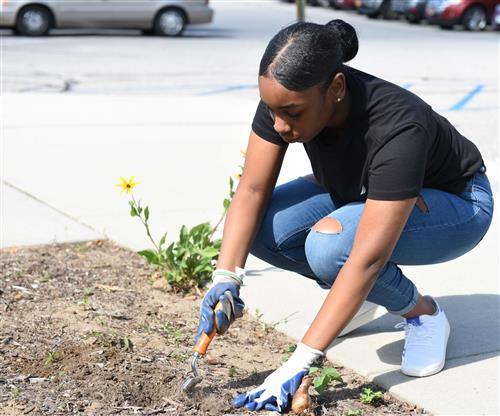 Teenage student plants bulbs outside her school