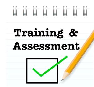 Training and Assessment logo
