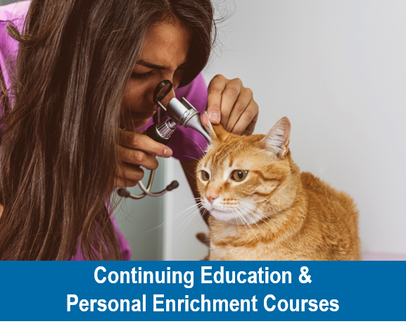 Continuing Education and Personal Enrichment Courses